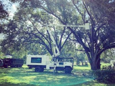 sunshine on a southern environmental box truck