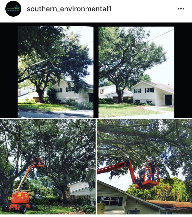 4-pic-collage-social-tree-bucket-lift