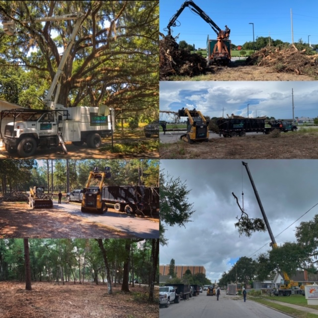 6-pic-collage-bucket-truck-bobcats-large-crane-land-clearing