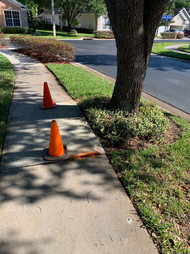 side-walk-cones